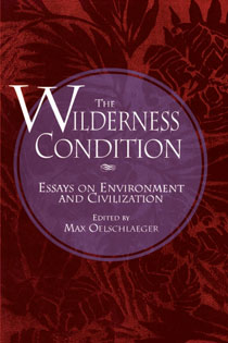 The Wilderness Condition