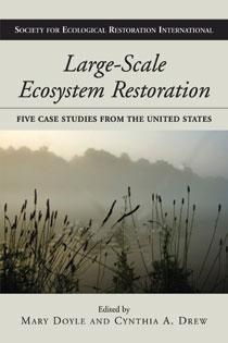 Large-Scale Ecosystem Restoration