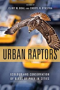Urban Raptors