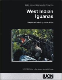 West Indian Iguanas