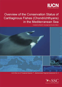 Overview of the conservation status of cartilaginous fishes (Chrondrichthyans) in the Mediterranean Sea
