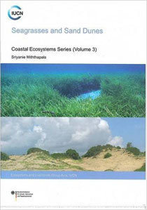 Seagrasses and Sand Dunes