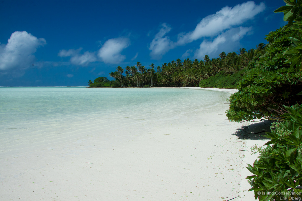 Palmyra Atoll, which is already protected as a marine monument from President George W. Bush