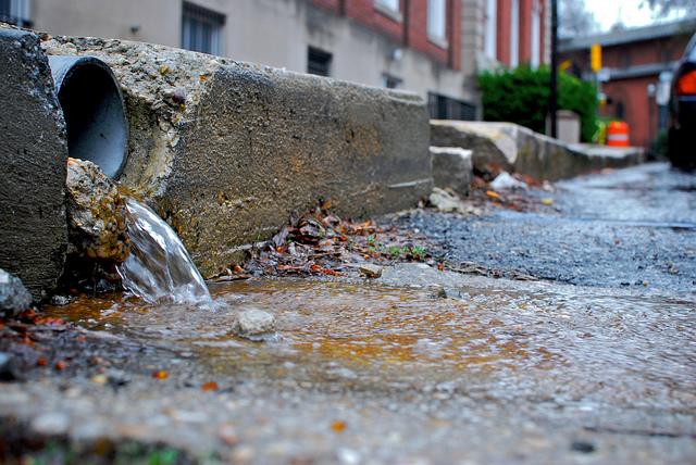 Stormwater in Annapolis. Photo by the Chesapeake Bay Program, used under Creative Commons licensing.