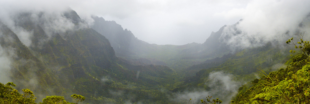 Kalalau Valley from Pihea Trail in the rain. Photo by Miguel Vieira, used under Creative Commons licensing.