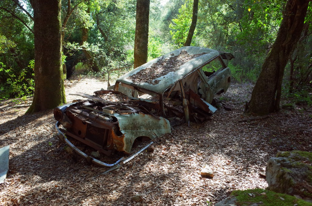Agriculture, cemeteries and abandoned vehicles on the urban edge—an organic zoning without effort