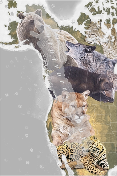 The Carnivore Way. Map by Curtis Edson.