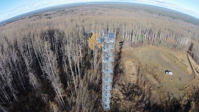 A flux tower in Canada. Photo by ibmphoto24, used under Creative Commons licensing.