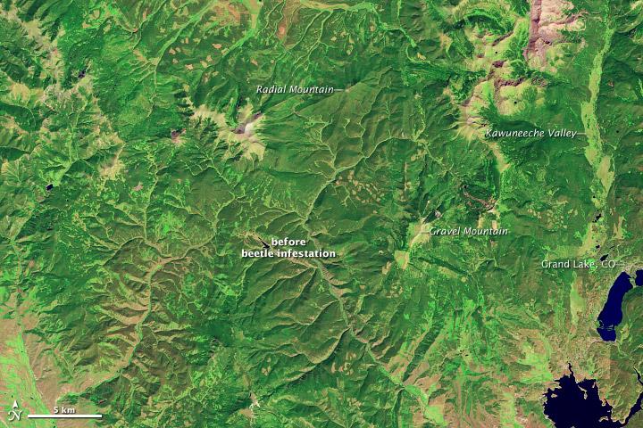 Landsat image of lodgepole pine forests near Grand Lake, Colorado, in September 2005.