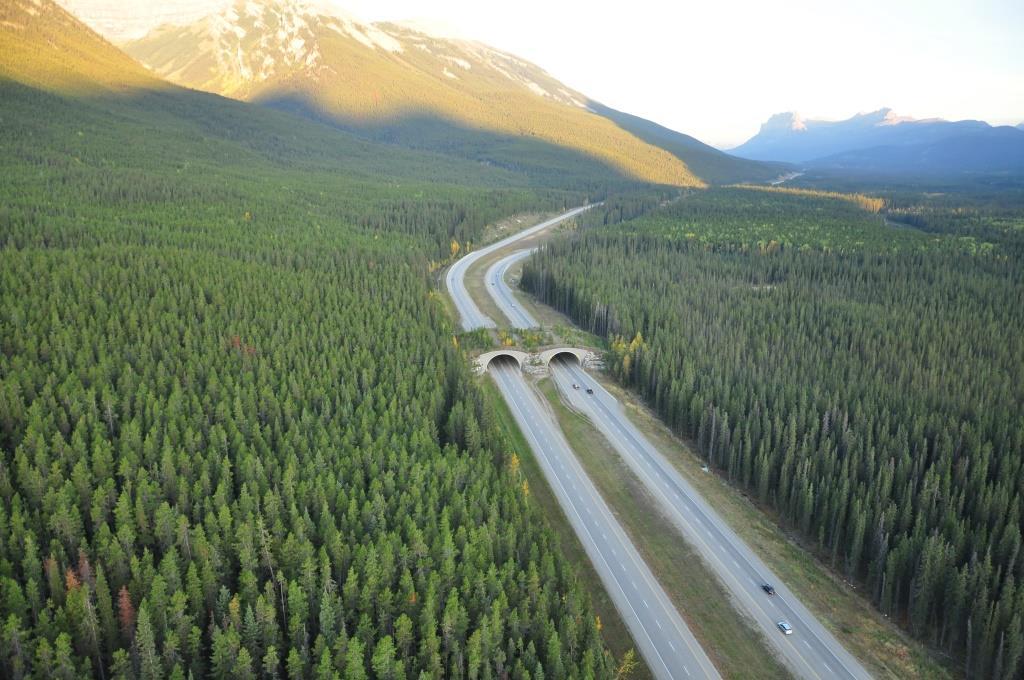 Photo courtesy Parks Canada.