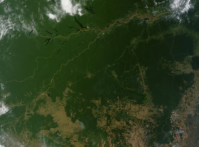 Satellite image of the Amazon showing patches of deforestation. Photo by NASA Goddard Space Flight Center, used under Creative Commons licensing.