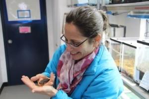 Amy Nelson holding an ambassador salamander.