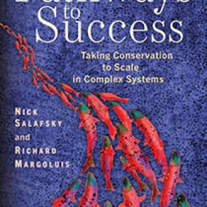 Pathways to Success | Island Press