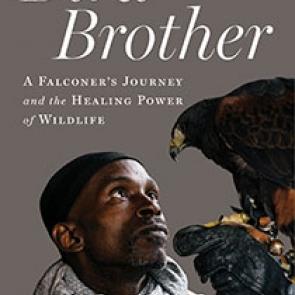 Bird Brother | Island Press