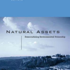 Natural Assets
