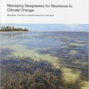 Managing seagrasses for resilience to climate change