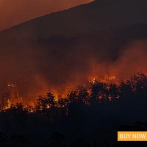 Flames of Extinction | Island Press