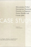 The Business of Sustainable Forestry Case Study - Menominee