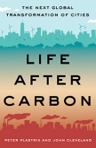 Life After Carbon