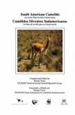 South American Camelids