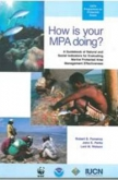 How is Your MPA Doing?