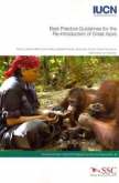 Best practice guidelines for the re-introduction of great apes
